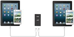 WALL CHARGER + 2 USB PORTS 12W 1 STUK