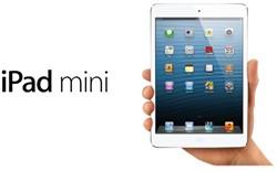 IPAD MINI APPLE 64GB WIFI + CELLULAR WIT 1 STUK