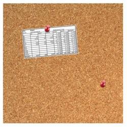 Prikbord Desq 35x35cm kurk
