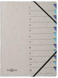Sorteermap Pagna Easy 12 tabs A4 PP grijs/blauw