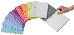 Schrift Adoc Pap-ex color A5 144blz A5 ruit 5mm assorti