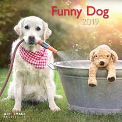 Kalender 2019 teNeues funny dog