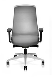 BUREAUSTOEL INTERSTUHL EVERYIS1 156E CHILLBACK WIT FRAME